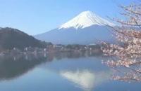 جاذبه های گردشگری ژاپن سفر نامه مجری مستقیم و بدون واسطه تور ژاپن  - تفریح و سفر