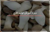 آموزش آشنایی با تولید انواع قارچ های خوراکی