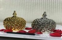 فروش دستگاه مخمل پاش و فانتاکروم در بیرجند  02156571305