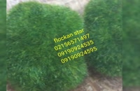 پودرمخمل-ایرانی/ترک پودرهای مخمل درطیف های رنگی02156571497
