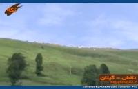 رسانه مجازی نگاه استان گیلان تالش  | مسافرت