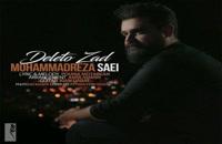 Mohammad Reza Saei Deleto Zad