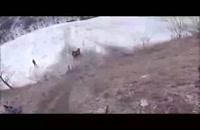 جالبترین - ویدیو : ویدیو های جالب - صحنه های خنده دار وطنز