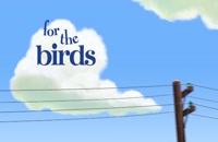 انیمیشن for the birds (انیمه)