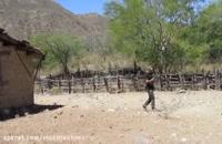 نماینگی فلزیاب سیستان و بلوچستان 09100061387 اجاره فلزیاب