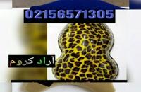 فروش دستگاه کروم پاش 02156571305/