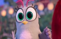 انیمیشن پرندگان خشمگین ۲- The Angry Birds Movie 2 2019