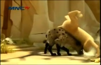 لئون شیر بیشه زار ق 52