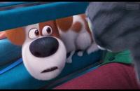 انیمیشن pet 2 | انیمیشن