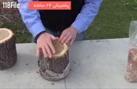 آموزش پرورش قارچ - قارچ های خوراکی