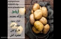Prompto | قارچ کش ویژه مزارع سیب زمینی | ضد بلایت زودرس و دیررس