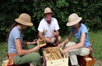 072040 - زنبورداری سری اول