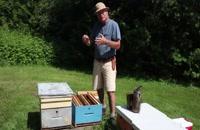 072027 - زنبورداری سری اول