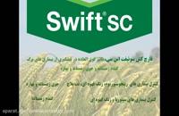 سوئیفت اس سی | Swift Sc قارچ کشی بی همتا در بین سموم ضد آفات گندم