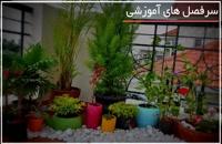 پرورش گل و گیاه آپارتمانی با راندمان عالی