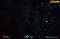 غار وایتومو در نیوزلند، غار مرموزی که ستاره باران شده است - بوکینگ پرشیا