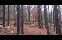 جدید - ویدیو : گلچین شده : انفجار خنده