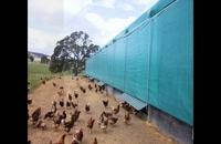 021-26207536 ساخت و اجرای انواع سالن های چادری پرورش مرغداری و حیوانات