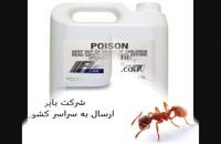 فروش سم مورچه صدرصد کشنده