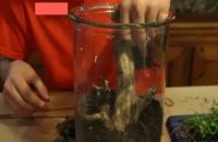 آموزش ساخت آکواریوم لوکس شیشه ای