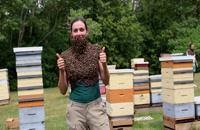 072048 - زنبورداری سری اول