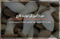 آشنایی با برترین روشهای تولید قارچ