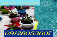 آرادکروم فروشنده دستگاه فلوک پاش/02156571305