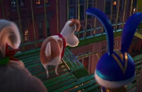 Animation The Secret Life of Pets 2 2019