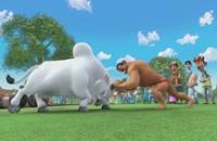 انیمیشن بیم کوچولوی قدرتمند(ف1ق7)-Mighty Little Bheem 2019