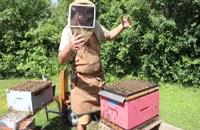 072037 - زنبورداری سری اول