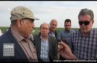 همهچیز درباره ارتباط هورالعظیم با سیل خوزستان