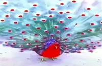 طاووس قرمز را ببینید.