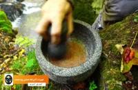 اشپزی در جنگل:لذت درست کردن کباب کوبیده زغالی در طبیعت