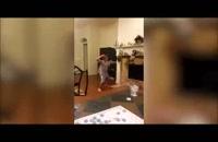 جالبترین - ویدیو : کلیپ های جالب : خنده دار ترین ها