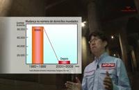 ژاپن و سازه ضد سیل که مجسمه آزادی و شاتل فضایی در آن جا می شود!