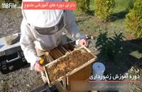 آموزش زنبور داری با تجهیزاتی ابتدایی