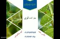سم کنه کش اُبرون | Oberon راه حلی قوی برای مشکل مگس سفید و کنه های درختی