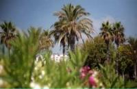 خرید اینترنتی بلیط هواپیما آنتالیا