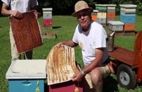 072049 - زنبورداری سری اول