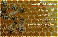 نکات زنبورداری برای روش نیکوت