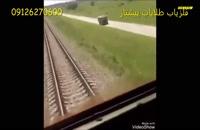 حوادث از برخورد حیوانات با قطار