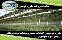طرح توجیهی گلخانه هیدروپونیک توت فرنگی