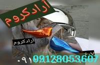 دستگاه مخمل پاش کریستال کروم/02155544879