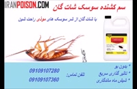 فروش انواع سموم حشرات