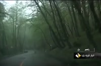 Iran DalKhani forest, Nature People, Ramsar county گردشگری در جنگل دالخانی شهرستان رامسر ایران  | گردشگری