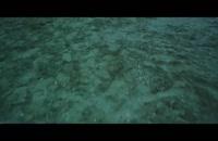 موزیک ویدیو بی تی اس-seve me  (موزیک ویدیو)