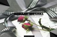 Farshid Mousavi Robane Meshki